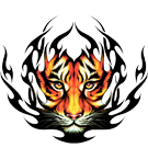 Tiger Face - Fire Effect
